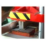 Каменный мраморный гранит штемпелюя автомат для резки (P72/80)