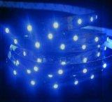 RGB+Warm 백색 백색 다중 색깔 LED 유연한 가벼운 지구