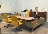 Modernes erstklassiges Büro Bookrack mit Tür (C9A)