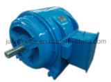 JR motor arrollado en serie Jr500L3-6-480kw del molino de bola del motor del anillo colectando del rotor