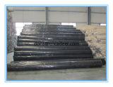 L'alta vetroresina Geogrid, bitume di Stength ha ricoperto la vetroresina Geogrid (rinforzo dell'asfalto)