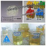 筋肉成長のための同化ステロイドホルモンのホルモンの粉のテストステロンUndecanoate