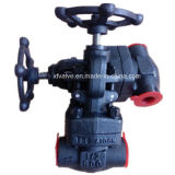 800lb Forged Carbon Steel A105 Thread Ende NPT Globe Valve