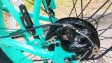 26*4.0インチの全販売のペダルエンジンの電気バイクのための最新の電気自転車の方法山Eのバイク