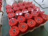 セリウムが付いている30tonチェーンブロックまたは手動チェーン起重機への500kg