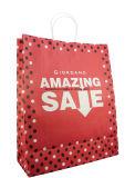 La coutume en gros a estampé le sac de achat de cadeau estampé par papier avec le traitement de papier