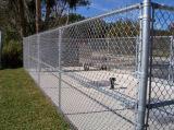 O PVC animal da cerca da ligação Chain da cerca revestiu e galvanizou