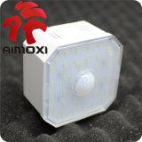 Indicatore luminoso/soffitta/cancello/corridoio/balcone del sensore del LED