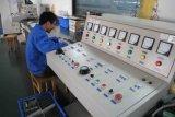 Inverseur actuel triphasé de fréquence de contrôle de vecteur 110kw