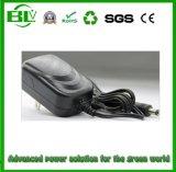 De Lader van de Batterij van de Leverancier 25.2V1a van Shenzhen OEM/ODM aan de Levering van de Macht voor Li-IonenBatterij met het Aangepaste Koord van de Macht
