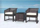 Silla al aire libre de la rota del vector de la rota de los muebles del ocio del jardín