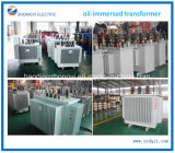 Transformator 6~33kv van de Distributie van de Macht van de Apparatuur van de macht de Olie Ondergedompelde