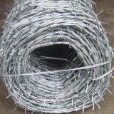 Arame farpado galvanizado da torção aço dobro