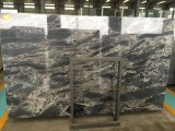 China Blue Marble Slab Luxury Marble para projeto comercial