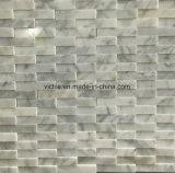 Nuovo mosaico della pietra del marmo di disegno (VMM3S010)