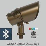 IP65 ETL Proyector orientable ajustable y RGBW alejado Luz de jardín de cobre amarillo