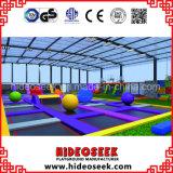 Большая крытая кровать Trampoline для парка атракционов