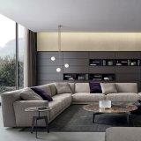 Sofá de linho moderno da tela com a esponja high-density na sala de visitas (F629-6-2)