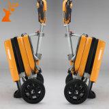 Un motorino piegante elettrico delle 2017 di vendita nuove rotelle calde di modo tre
