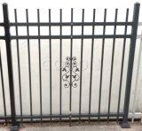 粉のコーティングと囲う装飾的な庭の鋼鉄