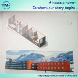 casa del envase de los 40FT para el campo de los trabajadores