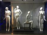 Moda Feminino Novo Manequim para Senhoras Vestido