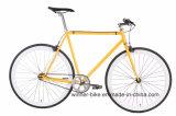 Örtlich festgelegtes Gang-Fahrrad