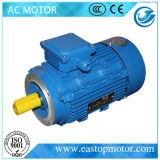 Frau Electrical Motor für Erdöl mit externem Terminal