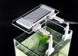 Heiße verkaufennoten-Steuerultradünne Wasserpflanze-engagierte Klipp-Lichter der intelligenz-Fisch-Klipp-Licht-13W 12V