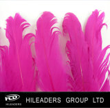 A cor-de-rosa quente tingiu o ganso ondulado empluma-se (RT020)