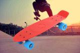 22 polegadas skate do cruzador dos peixes de quatro rodas da rua de mini