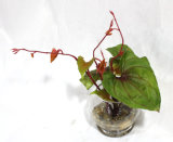 홈 또는 정원 훈장을%s 손 감각 인공 꽃 또는 플랜트