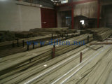 De Pijp van het roestvrij staal (dl-S14013)