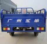Electric Tricycle for Cargo Hetd-01 with Trishaw