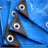 China Market PE Tarpaulin Sheet 20X30 Tarp