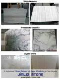 Белый гранитные плиты (XJL-GS0115)