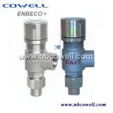 Druck-Entlastungs-Sicherheitsventil mit geöffneter oder naher Mütze