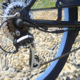 bicicletas eléctricas de la playa 250W36V para los hombres