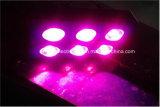 Wachsen volle Hydroponik der Leistungs-1000W des Spektrum-LED Lichter