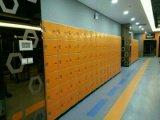 更衣室-項目No. Js38-6のための6つのドアのロッカー