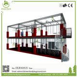 Parque interno do Trampoline com basquetebol para a venda