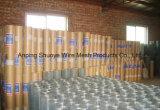 Покрынная PVC сваренная ячеистая сеть (фабрика Hebei)