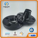 TUVと鍛造炭素鋼溶接ネック300lbsフランジ(KT0312)