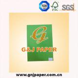 Papier de traçage de couleur verte d'OEM en roulis enorme ou feuille