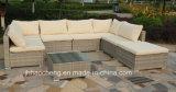 Mobilia esterna del giardino della mobilia del rattan Hc-W-T061