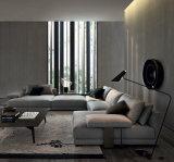Il sofà sezionale dell'ultimo del modello U tessuto di figura ha impostato con la mensola (FS-010)