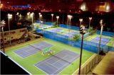 كثير قوسيّة 1000 [و] [لد] ضوء لأنّ كرة قدم/كرة مضرب ملعب مدرّج
