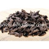 oreille en bois fongueuse noire sèche de bonne qualité de 2-2.5cm