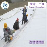 孤独なGeomembraneおよびProtective Geotextile Get Married