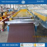 Roulis en acier de panneau de toit de couleur formant le constructeur de machine